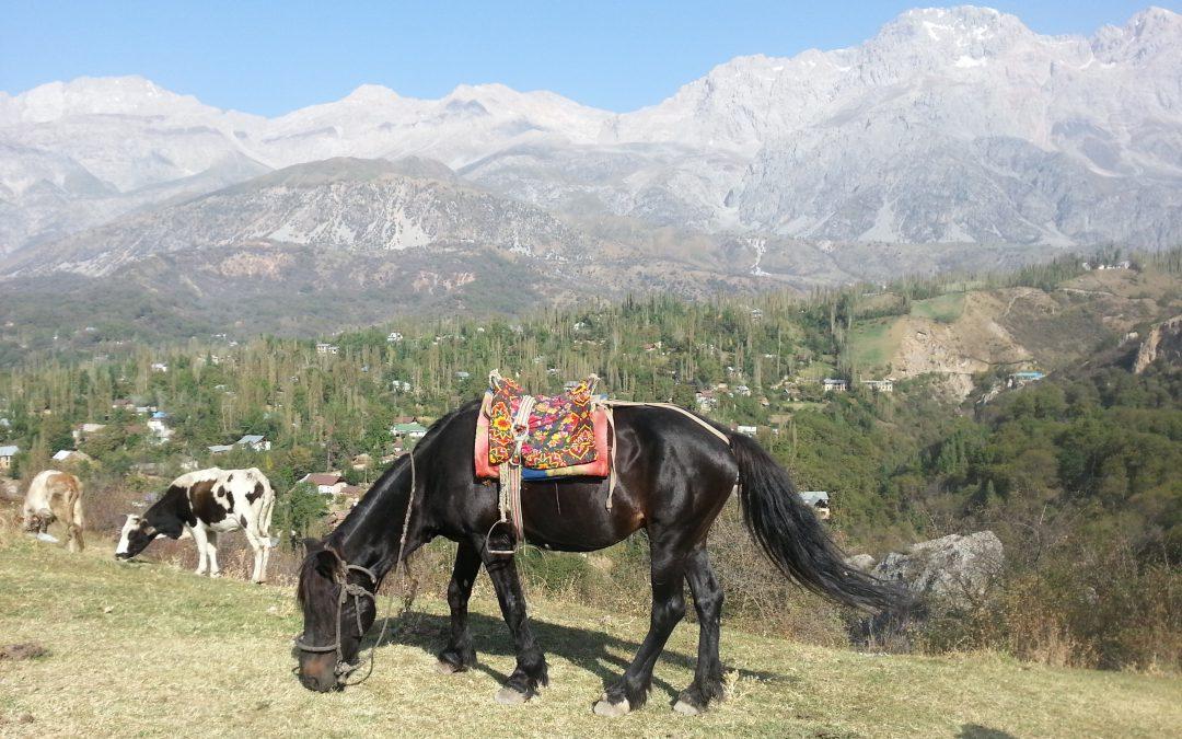 Kirgistan – Ein Land fernab vom Massentourismus, geprägt von den Ausläufern des Himalaya!